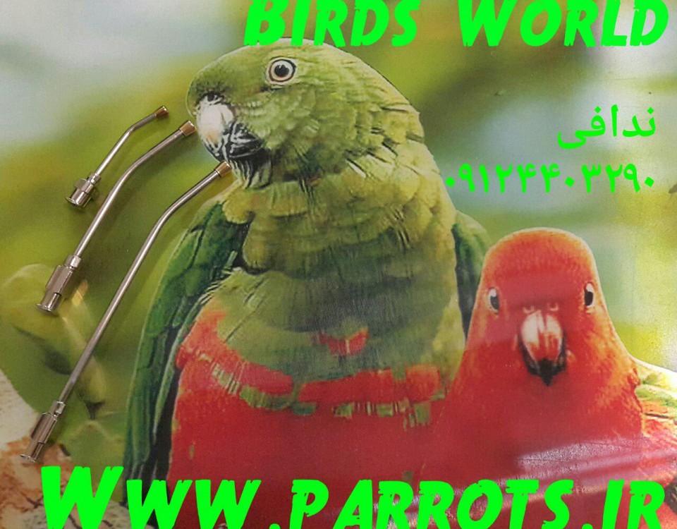 فروش سر سرنگ مخصوص سرلاک جوجه پرندگان زینتی