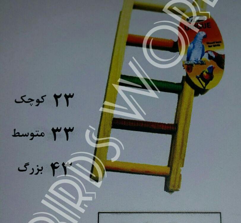 فروش نردبان طوطی