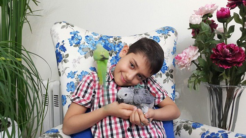 فروش طوطی کاسکو1.5 ساله سخنگو